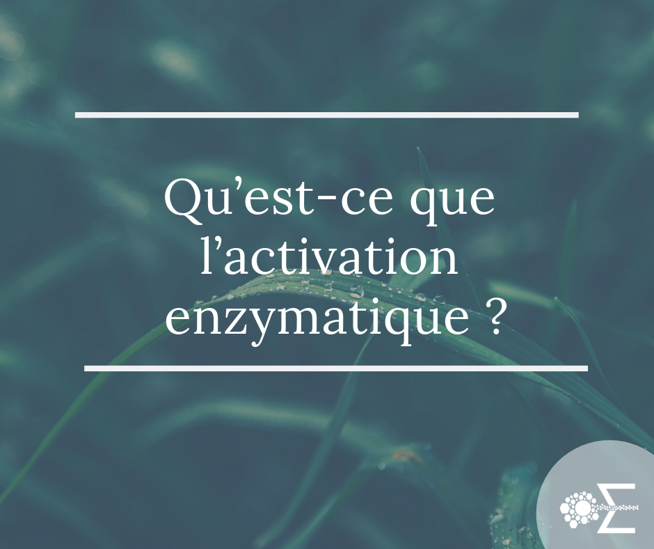 enzyme et activation