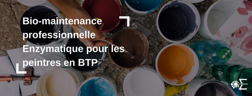 peinture et bio-maintenance professionnelles