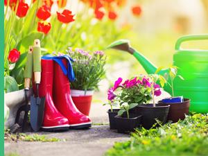 Produits écologiques pour le jardin